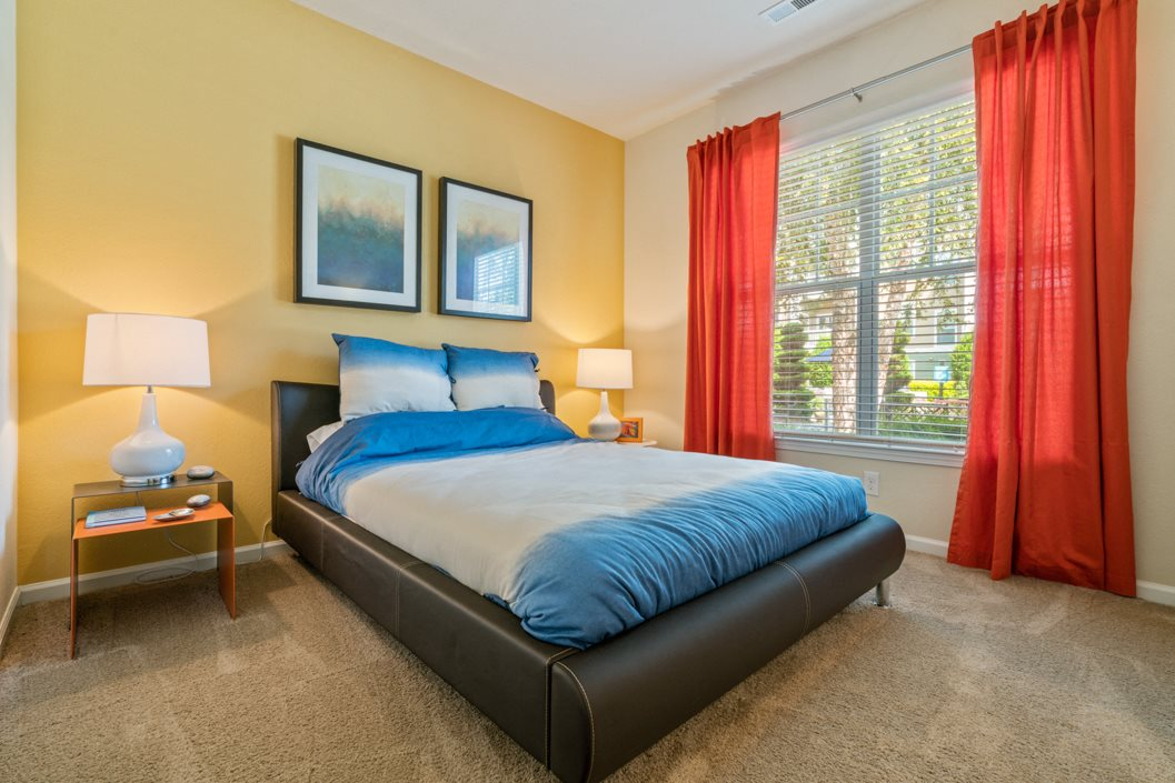 Spacious bedroom with plush carpeting, overhead ceiling fan and lighting  with large windows
