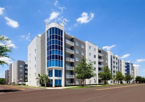 bell apartment living apartments in tampa fl