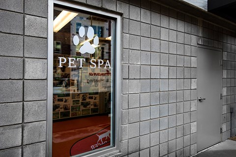 Artisan Twickenham Square Pet Spa