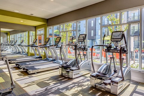 Artisan Twickenham Square Treadmills