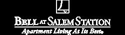 Salem Property Logo 22