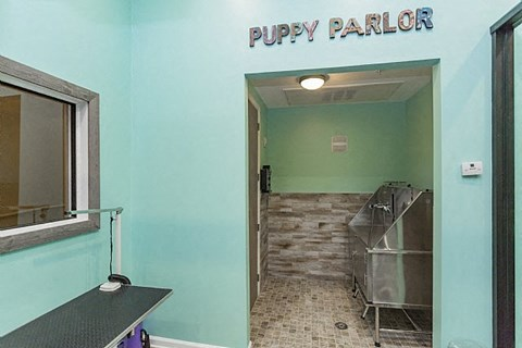 Dwell at McEwen Pet Wash