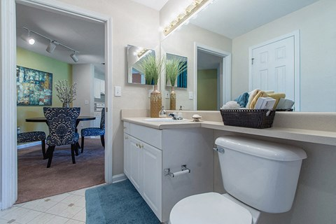 Legacy Mill Master Bathroom
