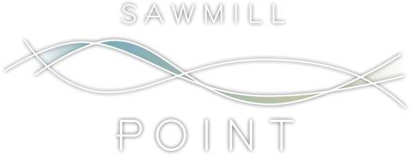 Wilmington Property Logo 1