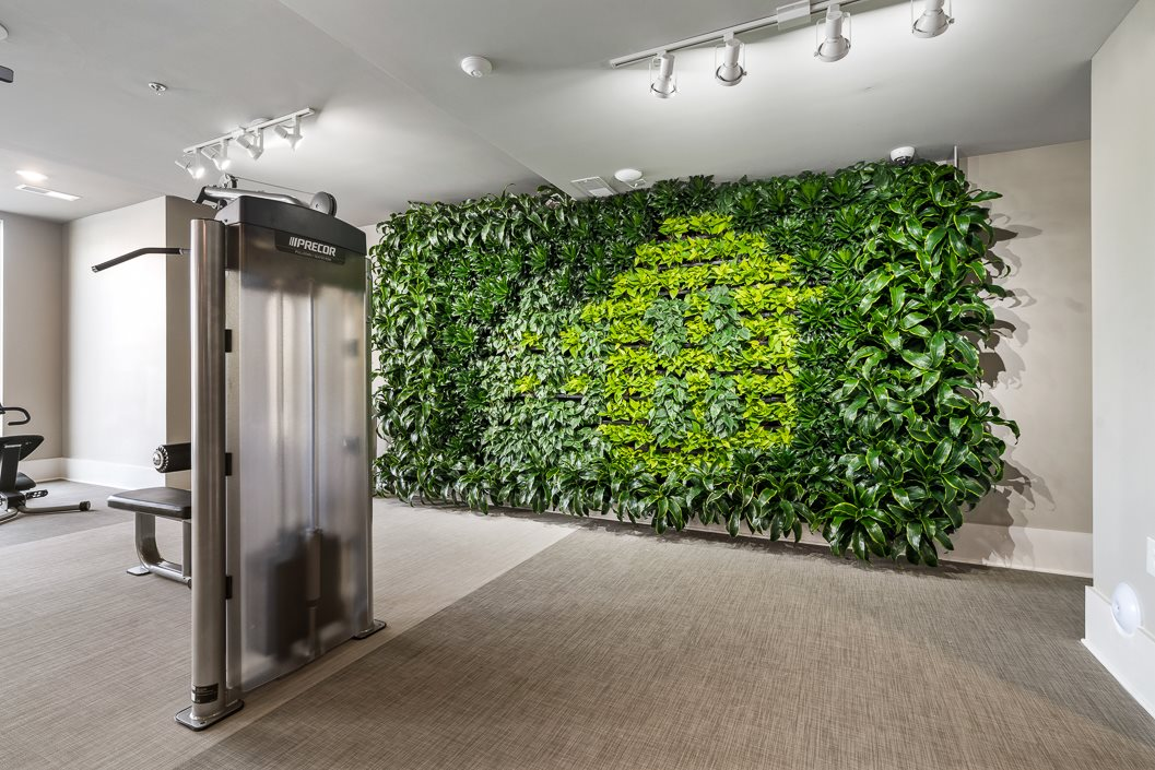 Purifying Living Wall in Fitness Center Hawthorne at Friendly Greensboro NC