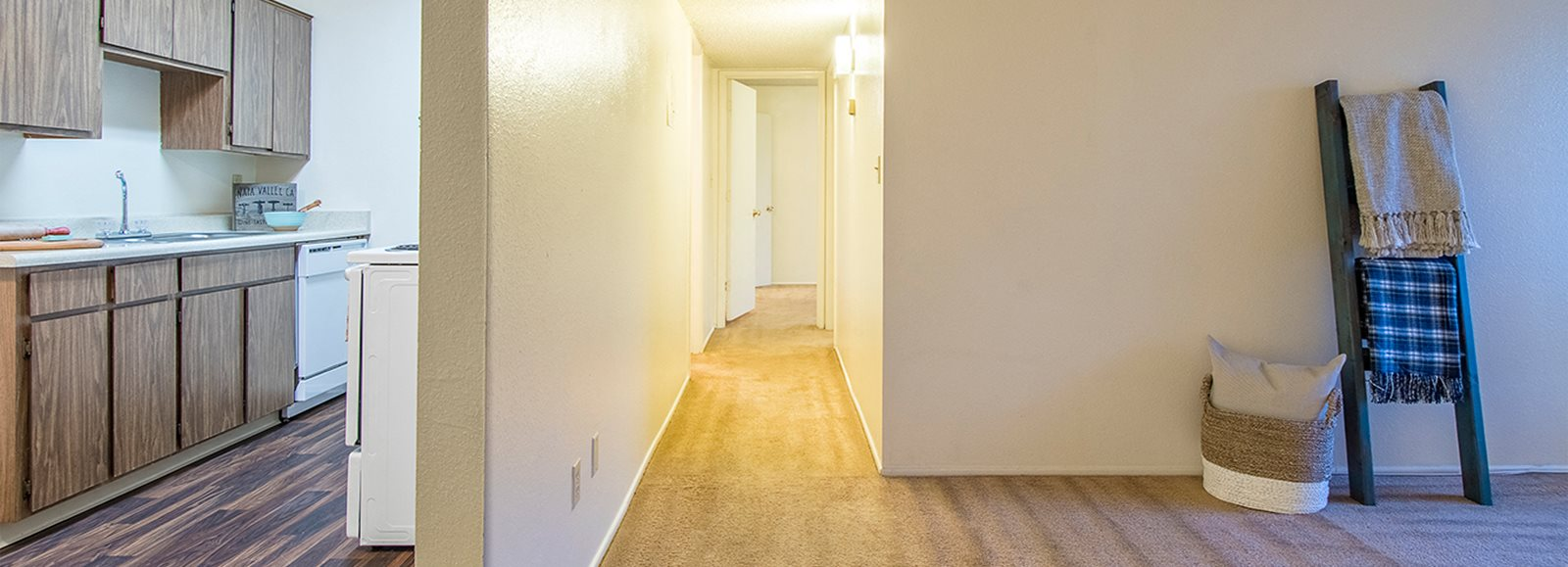 Tanglewood spacious apartments with carpet flooring  and nice lighting