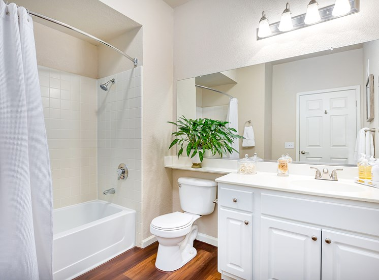 Willow Springs bathroom interior with soaking tub