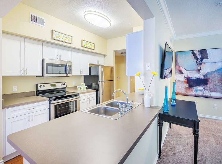 Lodge at Cypresswood Apartments - Interior - Ask about our upgraded kitchen with stainless steel appliances