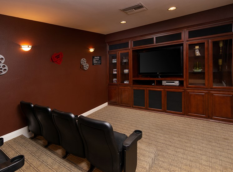 Barton Vineyard Apartments theater room