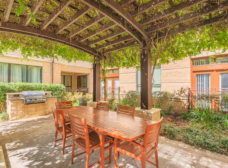 Lofts at Lakeview Apartments - BBQ grills with dining area
