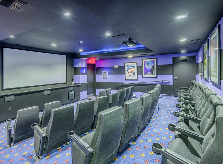 Lofts at Lakeview Apartments - Theater room with stadium seating