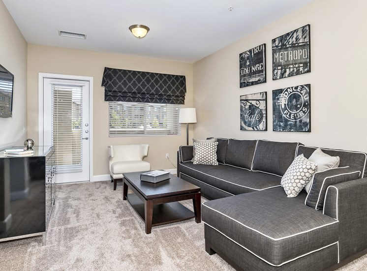 First and Main Apartments - Staged interior - Living room