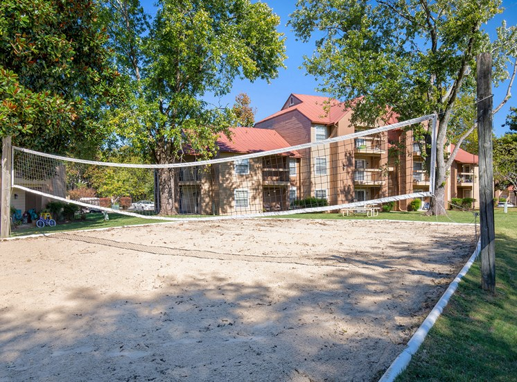 Oakwell Farms Apartments - Sand volleyball court