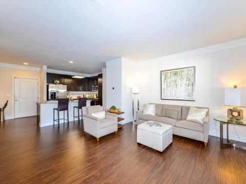 Amble Living Space with Wood Style Flooring at Vanguard Crossing Apartments, University City, MO 63124