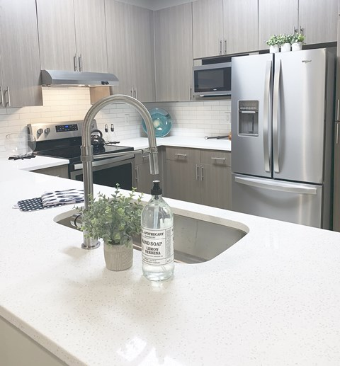 Brand New Custom Cabinetry, Stainless Appliances and Granite Countertops